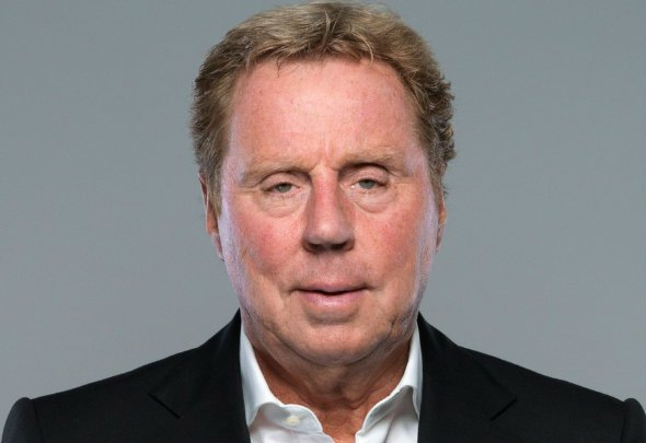 Rebuilding job: Redknapp is unimpressed by the squad assembled by Van Gaal